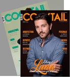mini-2-revistas