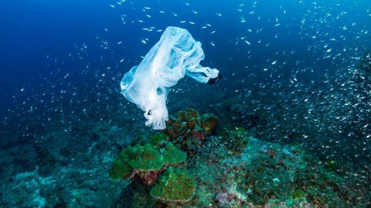5-acciones-para-combatir-la-contaminacion-en-el-mar